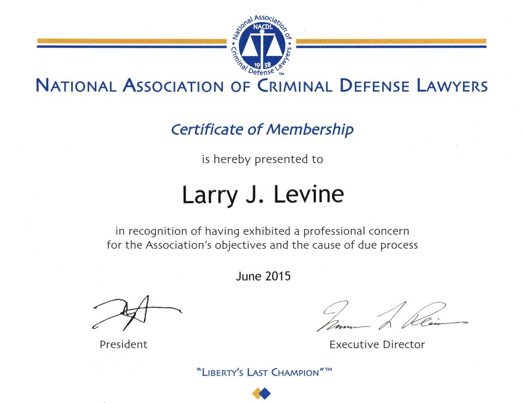 Larry Levine Prison Consultant Criminal Litigator