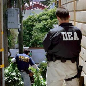 DEA Special Agents